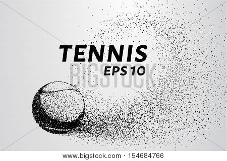 Tennis of particles. A tennis ball consists of circles and points.