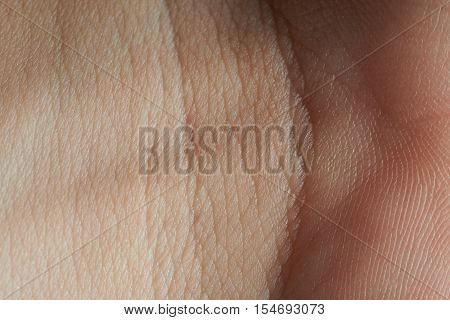 Skin On Join Of Hand