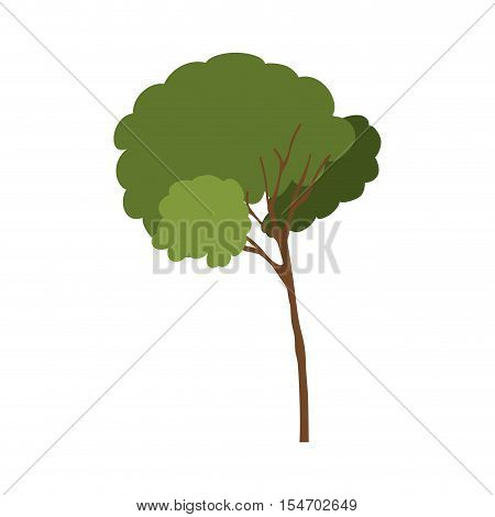 silhouette tree with leafy branches model one vector illustration