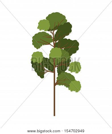silhouette tree with leafy branches model five vector illustration