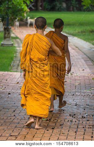 Monk in Buddhism. Portrait behind the monk walking.