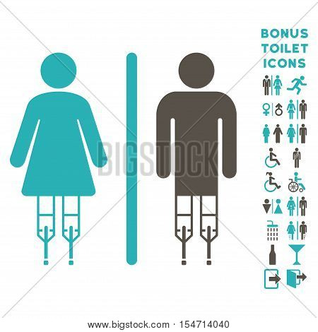 Disabled WC Persons icon and bonus man and lady WC symbols. Vector illustration style is flat iconic bicolor symbols, grey and cyan colors, white background.