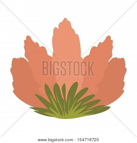 front view flower with sepal vector illustration