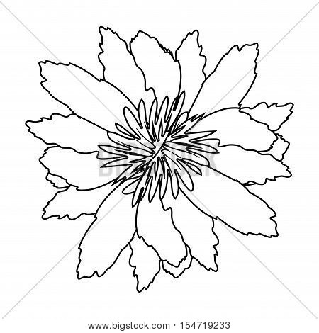 silhouette petals of flower with sepal vector illustration