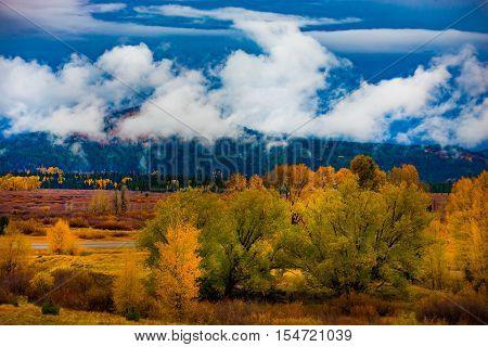 Autumn Landscape Near Jackson Hole Wyoming