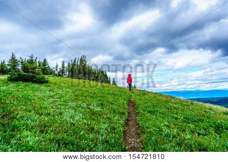 Senior Woman hiking through the Alpine Meadows of Tod Mountain in the Shuswap Highlands of central British Columbia on a cold and windy day