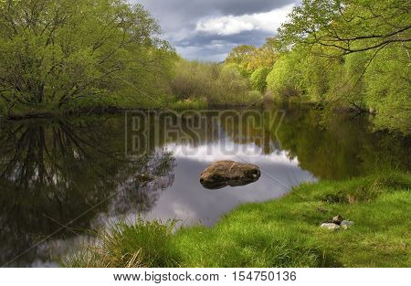 Tranquil lake scape with beautiful reflection and green forest background