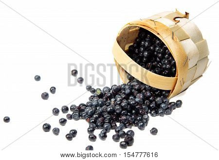 Blueberries in a basket on a white background