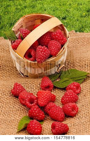 raspberry and burlap cloth . Food  background,