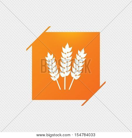 Agricultural sign icon. Gluten free or No gluten symbol. Orange square label on pattern. Vector