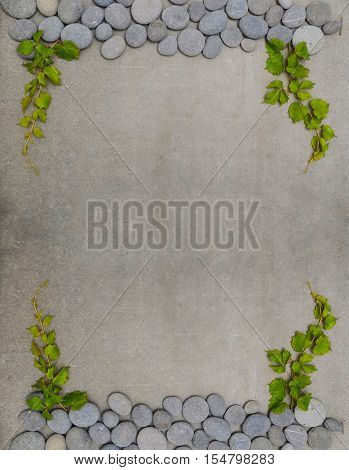 Green leaves of ivy (virginia creeper) on gray background of pile of stone