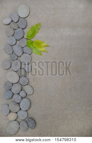 Bamboo leaves on pile of gray stones-gray background