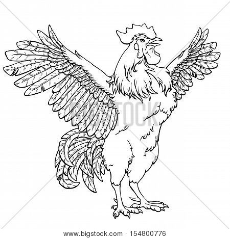 Vigorous rooster black contour line on white background. Fiery cock, chicken a symbol of the Chinese new year 2017. Vector illustration. Vintage.