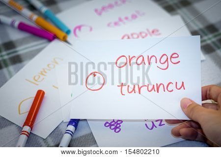 Turkish; Learning New Language With Fruits Name Flash Cards