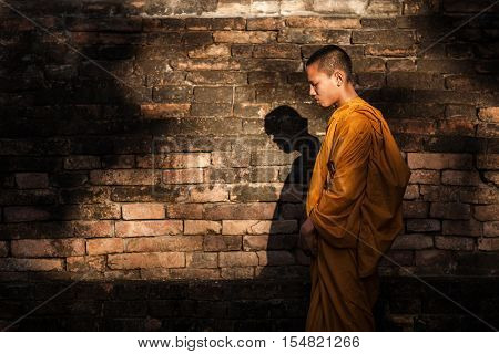 Novices monk vipassana meditation in thailand, burma .