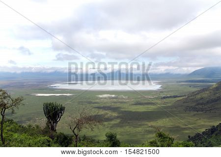 Tanzania meadows with mountains on a cloudy day in Ngorongoro Crater Conservation Area, Tanzania. East Africa