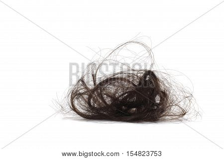 Still Life of a Wad of Human Hair on White Background