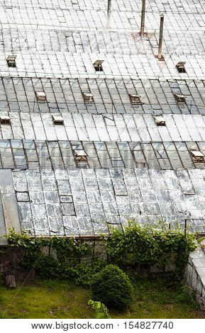 Glass roofs of the old greenhouses. View from above.