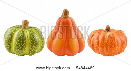 Set of decorative pumpkins isolated on white