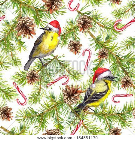 Birds in santa hats, candycane, christmas tree branches. Seamless pattern. Watercolor