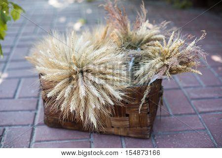 sheaf of wheat in a wicker basket