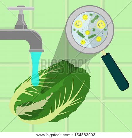 Washing Contaminated Cabbage