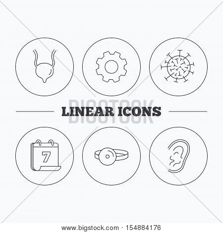 Virus, urinary bladder and ear icons. Medical mirror linear signs. Flat cogwheel and calendar symbols. Linear icons in circle buttons. Vector