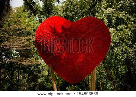 Red Heart shape icon in the natural environment