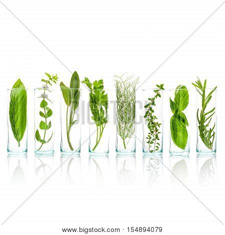 .close Up Bottles Of Aromatic Herbs . Sage, Rosemary, Sweet Basil Leaves ,lemon Thyme ,parsley Dill