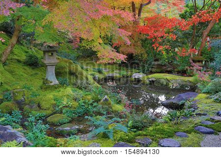 Zen Garden At Fall Season At Japan At Rurikoin