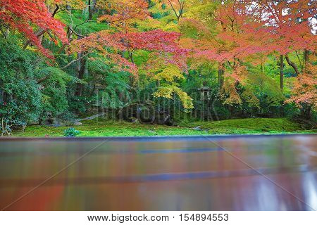 a zen garden at fall season at japan at Rurikoin