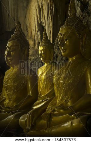 ROWS OF GOLDEN BUDDHA  IMAGES IN A DARKNESS Golden Buddha images are placed peacefully in a dark cave with light shining to buddha images face.