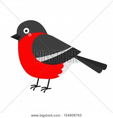 Bullfinch winter red feather bird. Cute cartoon funny character. Baby collection. Flat design. Isolated. White background. Vector illustration