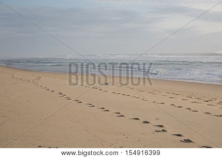 Bare footsteps on the sand on a beach