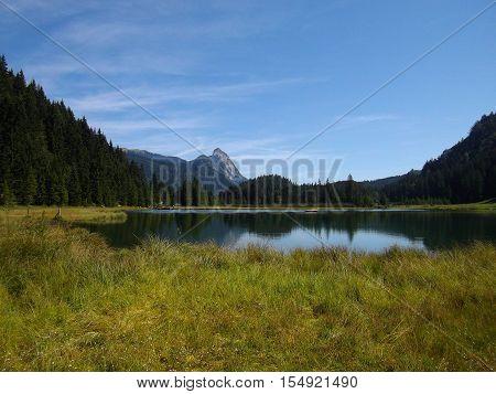 View Idyllic, beauty alpine landscape in Austria: lake, mountains, green grass, blue sky. Salzkammergut region, Upper Austria, Austria, Europe