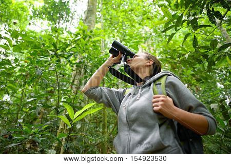 Young female hiker watching through binoculars wild birds in the jungle. Bird watching tours