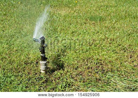 Garden irrigation system watering lawn. Water Sprinkler in public park.