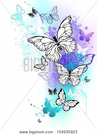 Flying butterflies against the background of the contour shaded purple and turquoise watercolor paint. Morpho. Design with blue butterflies morpho.