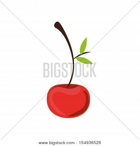 red cherry fruit icon. healthy food design. vector illustration