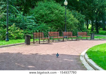 Park Bench And Alley In Park Outdoors