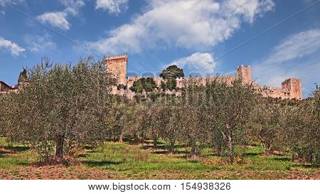 Castiglione del Lago, Perugia, Umbria, Italy: landscape with olive tree cultivation and medieval castle in the old town
