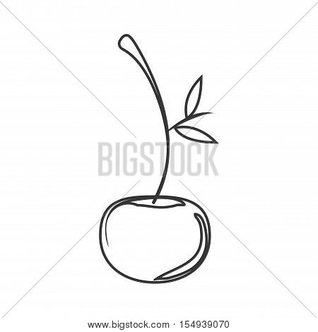 silhouette of cherry fruit icon. healthy food design. vector illustration