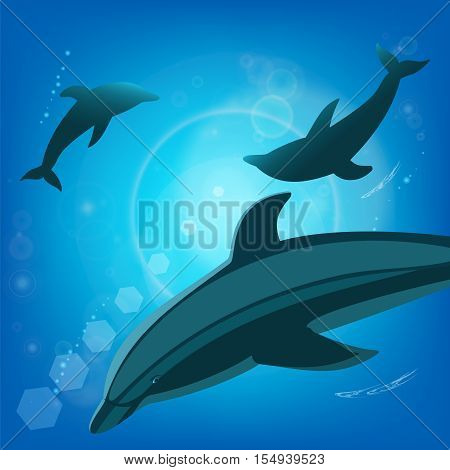 Dolphins underwater - sea animals. Three Dolphins silhouette swim in bright beams of a sunlight.