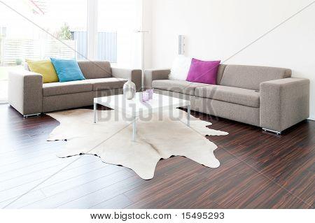 Modern lounge living room