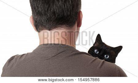 cat peeking over shoulder of pet owner