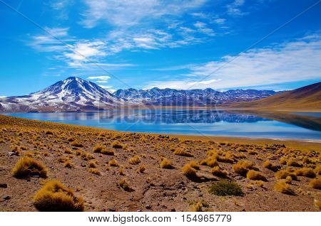 Panoramic view of the Laguna Altiplanica which is a high plateu Lagoon in the area of San Pedro de Atacama in Chile, South America