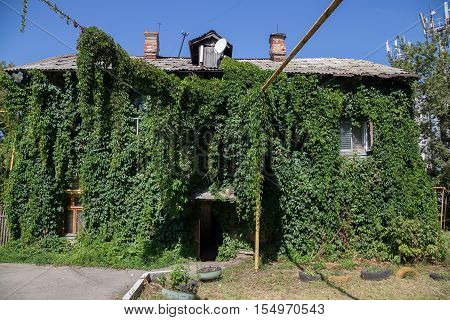 The house is overgrown with green vegetation in Samara, House covered with green plant of grape