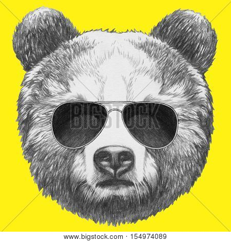 Hand drawn portrait of Bear with sunglasses.