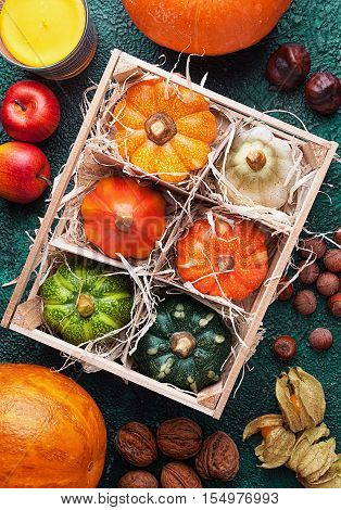 Wooden box with set of different pumpkins top view surrounded autumn harvest