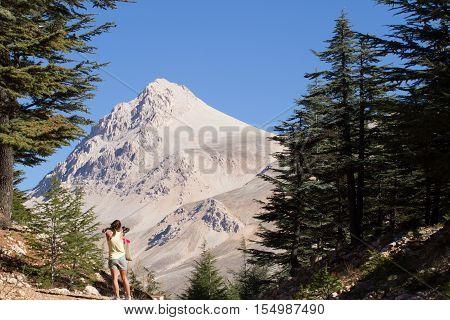 Scenery of mountain landscape in Elmali. Highland stone desert. Glacier trail. Cedrus trees